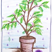 Office plant with purple rain, Municipal Restored, 2018