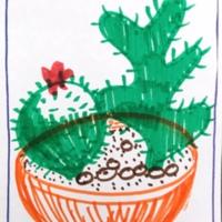 Cactus in orange bowl, Municipal Restored, 2018