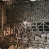 feed mill foreman standing on bags of feed.jpg